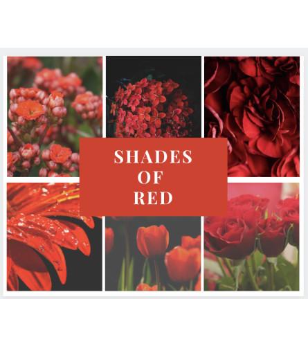 Shades of Red Arrangement