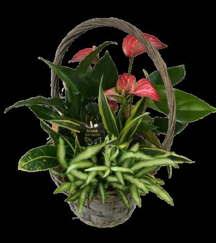 Tropical Wicker Basket