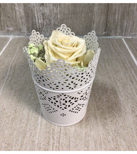 White Victorian Lace Preserved Rose