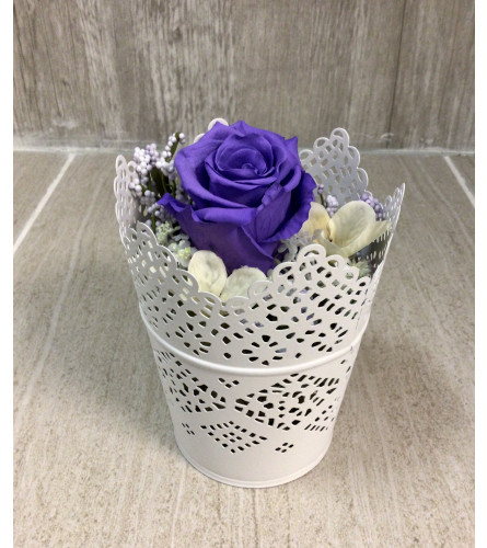 Purple Victorian Lace Preserved Rose