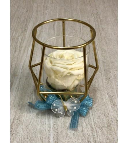 White Everlasting Treasure (Preserved Rose)