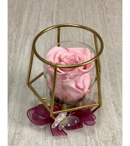 Pink Everlasting Treasure (Preserved Rose)