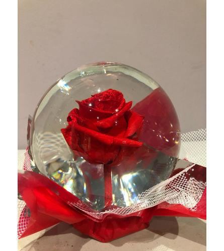 Eternity Red Rose Globe