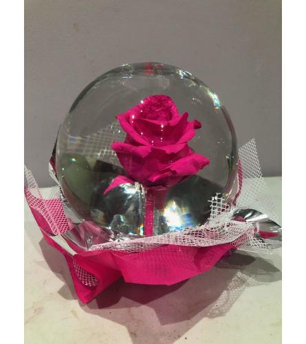 Eternity Pink Rose Globe