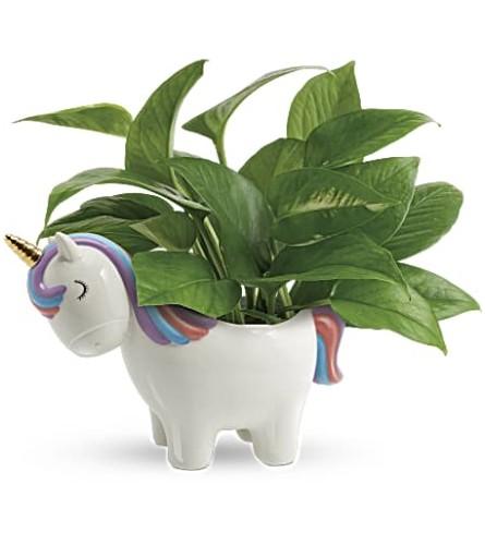 Unicorn planter