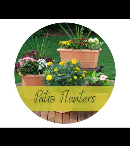 Bright & Colorful Patio Planter