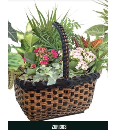 Zuri Garden Basket Planter