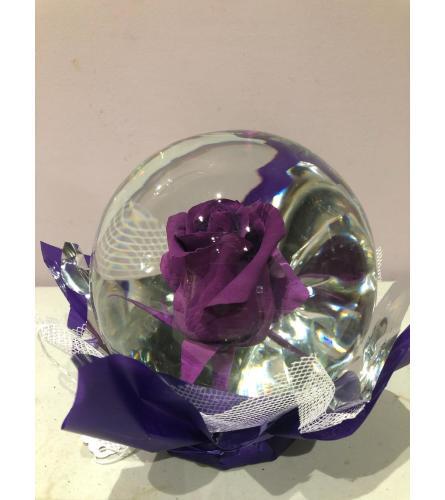 Eternity Purple Rose Globe