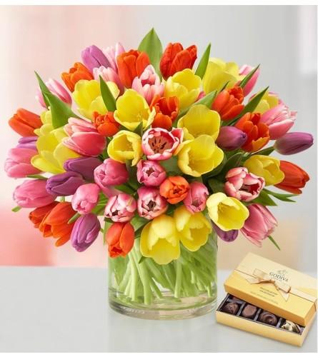 Tulipan Glamour With Chocolate