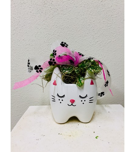 Kitty Kit-Kat Planter