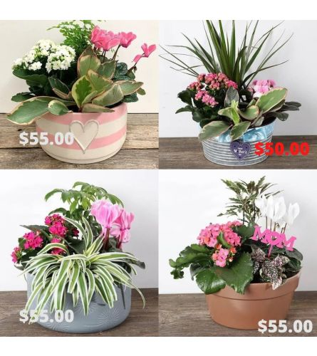 Mother's Day Planter 2021