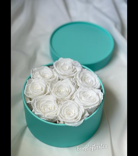 White Preserved Roses