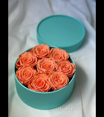 Peach Preserved Flowers