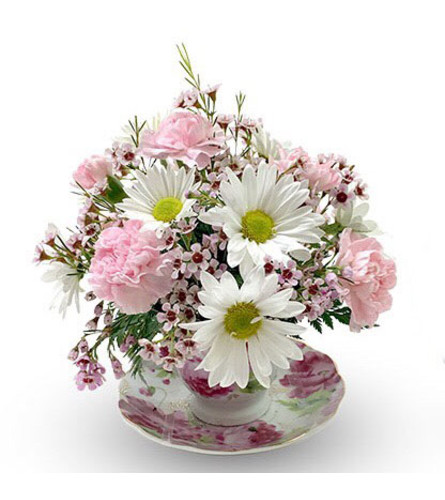 Daisies and Carnations Teacup