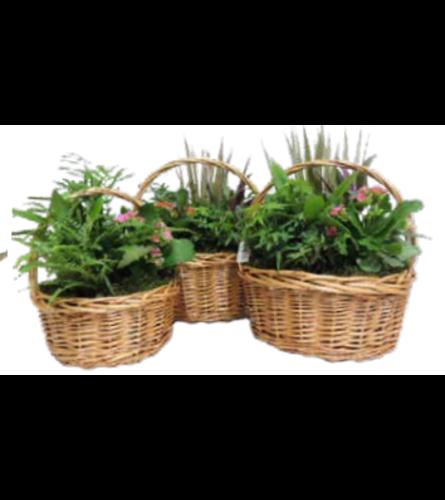 Round Willow Basket Planter