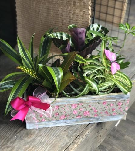 Sweet garden planter