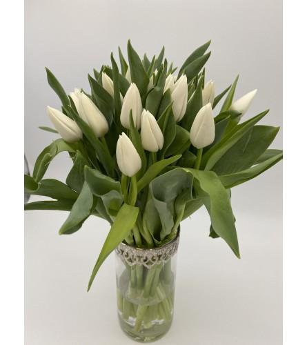 Classy white tulips