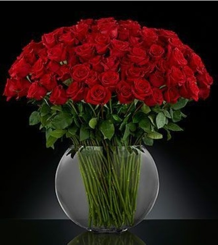 Extravaganza Red Roses