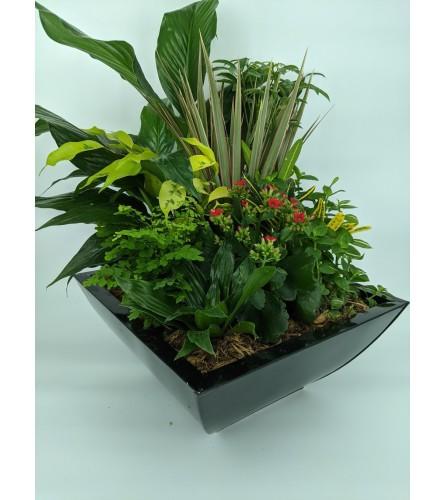 Blumz Medium Planter