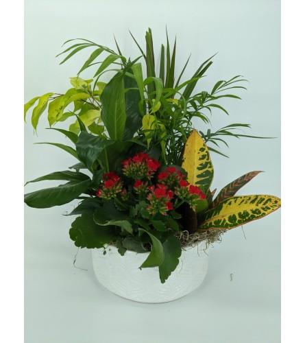 Blumz Small Planter