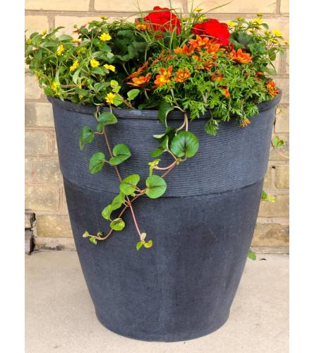 Large Patio Planter Black Pot - One Size Only