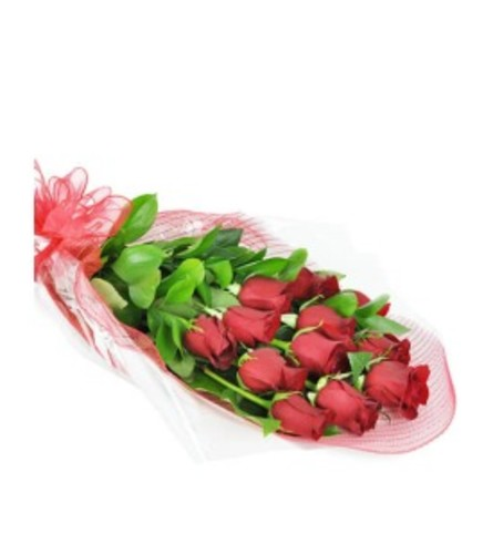 1/2 Dozen Red Roses Wrapped w/ baby's breath, fillers, and greens