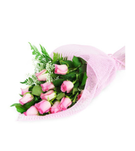 1/2 Dozen Pink Roses Wrapped w/ baby's breath, fillers, and green