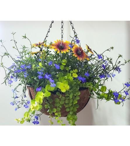 """8"""" Outdoor Summer Blooming Hanging Basket"""