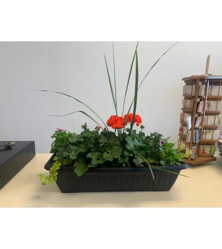 Outdoor Spring Window Box