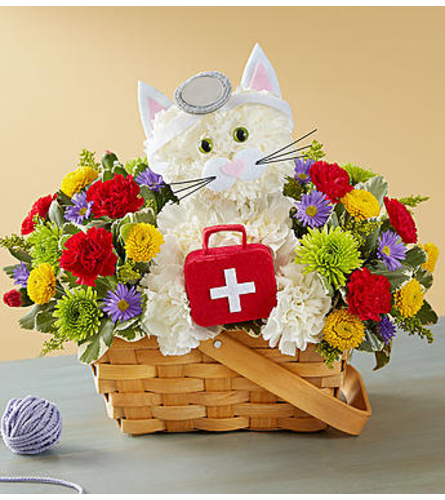 CURE  ALL KITTY BASKET