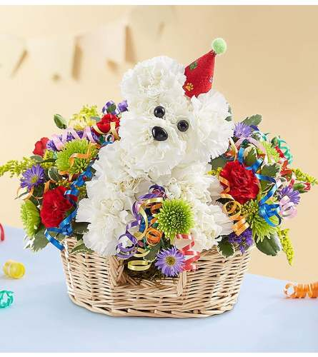 ANOTHER YEAR ROVER DOG BASKET