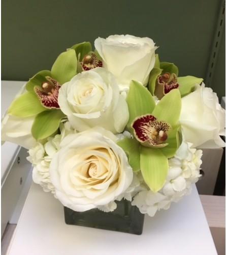 Roses cymbedium orchid