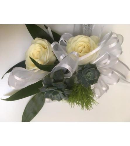 white roses succulent