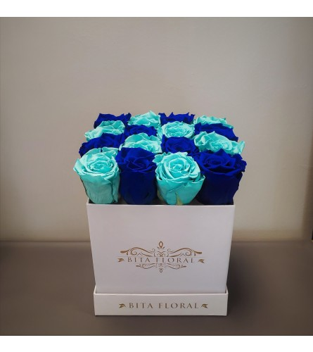 16 Blues Checkered Eternity Roses