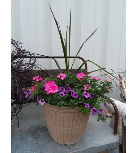 Greenhouse Decorative Planter - Large