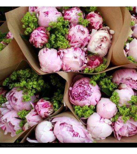 Peony Bouquet - Florist Choice Hand Tied Bouquet