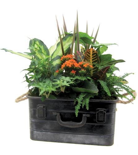 Tyson Metal Garden Box