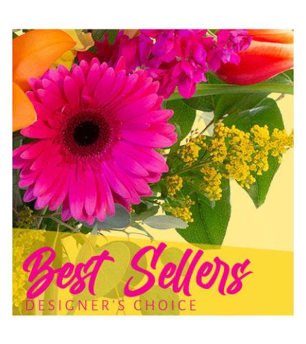 Best Sellers Designer Choice