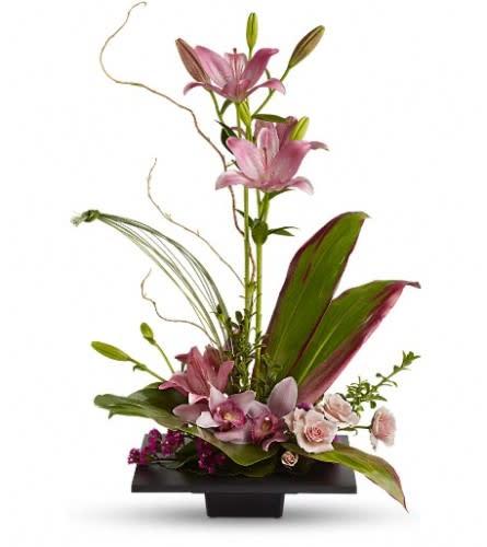 Imagination Bloom's with Cymbidium Orchids