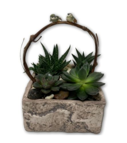 Assorted Leafy Planter