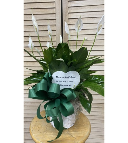 THOSE WE HOLD CLOSEST HEART PEACE LILY