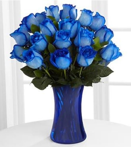 Extreme Blue Roses