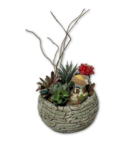 Sunny Berry Cactus Garden in Cobblestone Pot