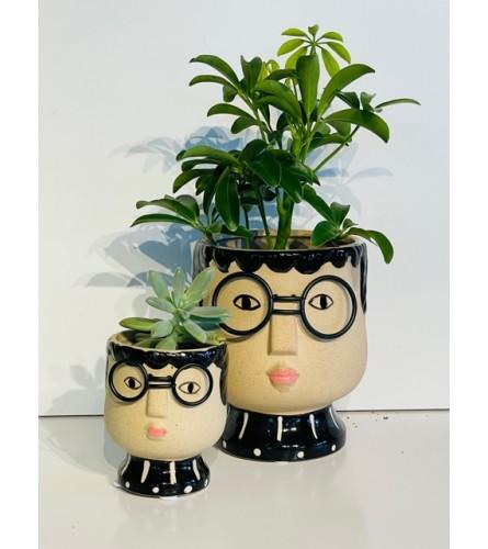 Smarty Plants!