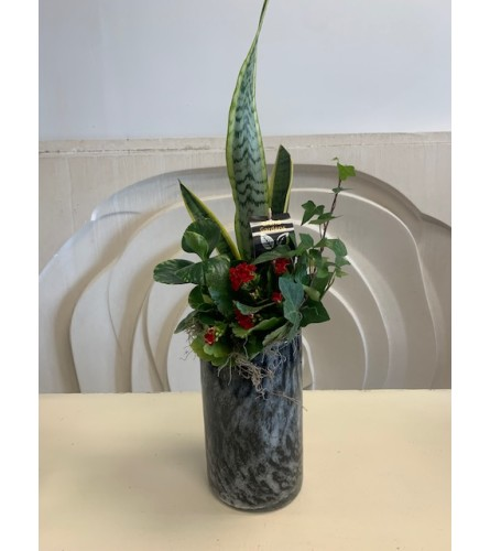 Tropical Vase Planter