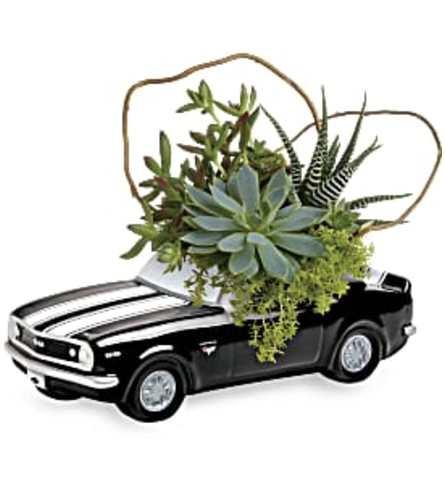Chevy Camaro Plant Garden (Teleflora)