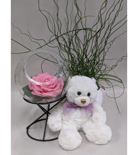 Endless Love with Pink Rose and Teddy Bear