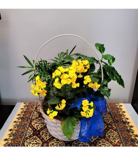 Flowering Planter with White Basket