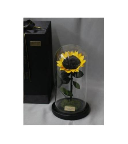 Faux Sunflower In Dome