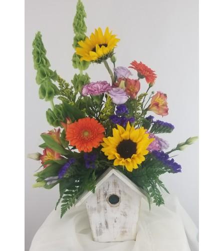 Birdhouse / bright & shine By Smith - Petra Flowers